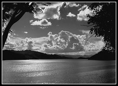 Nakharin Lake (Thai pix Wildlife photography,,) Tags: bw nature backlight thailand kanchanaburi thaipixwildlifephotography nakharinlake