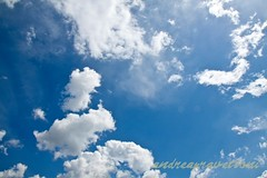 Sereno (andrea.prave) Tags: blue sky cloud yellow clouds jaune nuvole wolken rape amarillo gelb giallo cielo nubes nuvens campo nuages 雲 colza 黄色 עננים sereno 黄 облака سحاب أصفر pravettoni andreapravettoni andreaprave