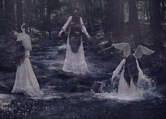 River Sirens (theroad2home) Tags: woman painterly bird girl animal fairytale forest vintage woodland river swan wings women dress moth folklore story swans moths magical tale timeless enchanted whimsical textured muted feathered