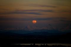 ...MoonRise... (7H3M4R713N) Tags: sunset sky moon lake bird alpes switzerland evening boat suisse outdoor swiss fullmoon moonrise soir neuchatel neuchtel stblaise romandie xt1 lakeofneuchatel flickrunitedaward xf50140mmf28rlmoiswr