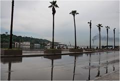 684-EL MALECN DESPUS DE LA LLUVIA - LA HABANA - (-MARCO POLO-) Tags: ciudades plazas rincones reflejos