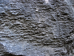 Limestones (Chepultepec Formation, Lower Ordovician; Natural Bridge State Park, Virginia, USA) 7 (James St. John) Tags: chepultepec formation limestone limestones marine natural bridge state park virginia ordovician calcite calcium carbonate rock rocks sedimentary