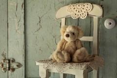 bear on a chair (s@ssyl@ssy) Tags: htbt teddy bear mink sitting chair 100x teddybear forteddybeartuesday