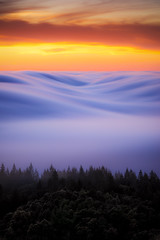 s m o o v e | marin county, california (elmofoto) Tags: sanfrancisco california sunset weather northerncalifornia fog clouds landscape nikon unitedstates hills explore bayarea marincounty sfbayarea norcal valleys marinelayer millvalley d800 70200mm explored nikond800 instagram fogaholic elmofoto