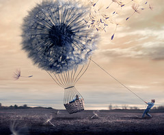 Wish Vessel (Gabriel Tomoiaga) Tags: portrait art boys giant children landscape creativity photography weed wind surrealism horizon fineart gabe flight dream surreal rope fantasy fields hotairballoon mystical conceptual magical dreamscape dandilion tomoiaga