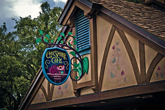 Cheshire Cafe (michealmanganphotography) Tags: world park travel summer sky love contrast america fun photography cafe orlando industrial cheshire florida scenic style scene disney them walt tones