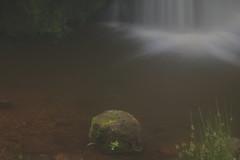 Parque natural de #Gorbeia #Orozko #DePaseoConLarri #Flickr -106 (Jose Asensio Larrinaga (Larri) Larri1276) Tags: 2016 parquenatural gorbeia naturaleza bizkaia orozko euskalherria basquecountry