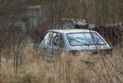 FSO Polonez and others (Spottedlaurel) Tags: fso polonez