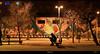 Elephant fish (dACE :)) Tags: barcelona night noche barceloneta nit graffitty
