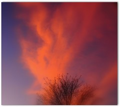 Fire in the sky (Jan 130) Tags: sunset cloud home bedroomwindow fierysky blinkagain magicalskiesmick