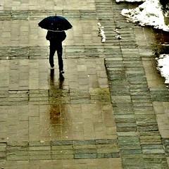 sagoma (archifra -francesco de vincenzi-) Tags: italy snow man umbrella square frame figure neve paving minimalism minimalismo riflessi homme ombrello carré parapluie molise isernia minimalisme sagoma minimalart pavage ilneige archifraisernia francescodevincenzi
