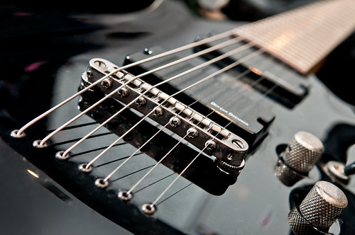 Flickriver Most Interesting Photos From Schecter Guitars