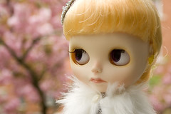 Cherry blossom! (Piticrunchy) Tags: ice mouth nose carved rachel ribbon blythe custom rune