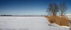 Not really much to do......... (Marijke M2011) Tags: winter panorama lake snow holland ice bluesky frozenlake zeedijk uitdam canon5dmarkii
