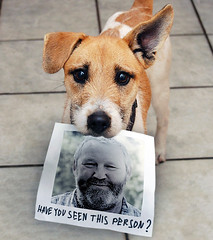 Have you seen this person? (NRG Photos) Tags: dog me fun dangerous hund wanted ich gefhrlich armed spas gesucht floppyear schlappohr bewaffnet nrgphotos cutethedognotme ssderhundnichtich