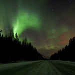 The northern lights #1