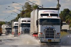 Scotts Refrigerated K200's (quarterdeck888) Tags: nikon flickr transport trucks kenworth haulage k200 bdouble fridgevans worldtruck jerilderietrucks newllhigway