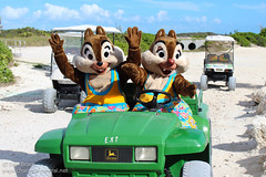 Having fun with Chip and Dale