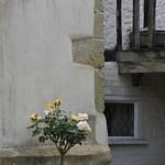 """2009-06-07_BOG_079 <a style=""""margin-left:10px; font-size:0.8em;"""" href=""""http://www.flickr.com/photos/76178133@N08/6981868953/"""" target=""""_blank"""">@flickr</a>"""