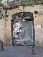 Barcellona, Barcelona, Spagna, Catalunya (davdenic  in the sky ) Tags: barcellona