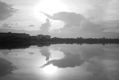 L9991728bw (ferry160102) Tags: morning bw waduk pluit