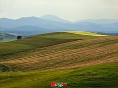 Campos de Jadraque | Guadalajara (alrojo09) Tags: naturaleza verde la guadalajara paisaje campo prado colina campos montaas castilla mancha hierba airelibre ladera jadraque llanuras alrojo09