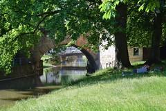 Maille - Esslingen am Neckar (chrissie.007) Tags: germany deutschland neckar stadtpark esslingen maille badenwrttemberg parkanlage liegewiese stadtinsel 20160526