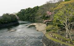 DSC07505 (Ustulo) Tags: japan spring ise iseshi isegrandshrine