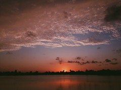 simplicity (eric seralena) Tags: life light sunset sky lake love water beauty silhouette clouds photography florida miami creation together photograph palmtree ripples alive vibes simple majestic existence iphone