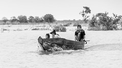 Monsoon season on Tonle Sap (tmeallen) Tags: family blackandwhite cambodia child father mother culture longtailboat tonlesap monsoonseason woodencraft floodedlake floodedvegetation semisubmergedtrees