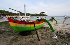 Rasta Boat