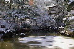 雪の円山公園/Maruyama-kouen garden (nobuflickr) Tags: winter snow kyoto 京都 雪 冬 garaden 庭園 円山公園 maruyamakouengarden 20120218dsc01963