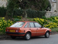 1982 Ford Escort Mark III