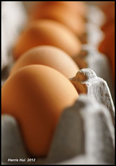 Eggs N8436e (Harris Hui (in search of light)) Tags: stilllife canada kitchen closeup pancakes vancouver contrast nikon bc bokeh box shapes richmond depthoffield textures simplicity eggs carton minimalism simple windowlight macrolens d300 funshot nikonuser nikon105mmmacro beautyinthemundane nikond300 homephotography lookingbutnotseeing harrishui vancouverdslrshooter beforetheyareeaten inthepackagebox
