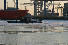 Through the ice (Vahancho) Tags: winter ice germany frozen hamburg alster elbe