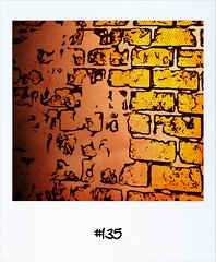 """#Dailypolaroid of 11-2-12 #135 #fb • <a style=""""font-size:0.8em;"""" href=""""http://www.flickr.com/photos/47939785@N05/6863274473/"""" target=""""_blank"""">View on Flickr</a>"""