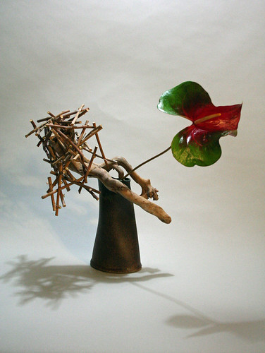 Anthurium with driftwood and structure of rose stems