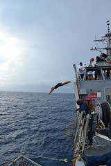 USS Milius (DDG 69) holds a swim call. (Official U.S. Navy Imagery) Tags: unitedstates military indianocean navy usnavy wwwfacebookcomusnavy