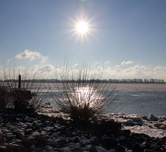 Sun and Ice (MEK40) Tags: trees winter light sky sun white snow cold color detail reflection tree ice nature wet water colors clouds canon river germany landscape deutschland photography eos star licht frozen photo bush wasser foto stones details hamburg natur himmel wolken beam steine explore rays february icy tamron stern eis landschaft sonne farbe weiss bume wedel sunbeam elbe sonnenstrahlen busch 2012 februar farben zweige 550 winterlandscape winterlandschaft weis willkommhft flus 550d schulau willkommenhft flickraward tamron18270 flickraward5 eos550 eos550d