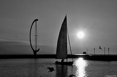 Entrer dans la lumire (Diegojack) Tags: eau lac paysages noirblanc