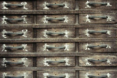 Japan Tokyo Omikuji (flaminghead Park) Tags: wood japan horizontal temple photography tokyo day religion nopeople indoors luck drawer dresser japaneseculture fortunetelling tokyoprefecture capitalcities colorimage largegroupofobjects flaminghead japanesescript