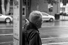bus stop (saltytheseal) Tags: road street travel bw woman signs streets bus travelling wet public senior buses monochrome look rain sign lady table point eos stand travels waiting dof finger transport sydney streetphotography documentary australia busstop stop portraiture nsw wait 5d paddington motor roads traveling dslr publictransport bustop calling raining doo timetable oxfordst yabba dabba stopping yabbadabbadoo environmentalportraiture