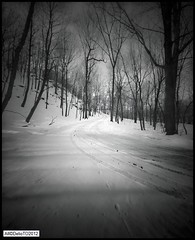 the road to the house, les Cantons de l'est... (DelioTO) Tags: wood winter snow canada landscape blackwhite quebec trails pinhole 8x10 february autaut ro9 shanghai100 f317