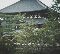 (skidu) Tags: park trees nature japan canon square landscape temple eos 50mm shrine f14 nara 550d