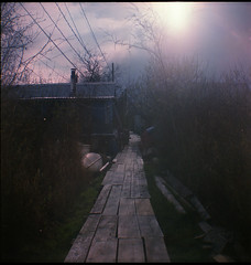 path (Beaulawrence) Tags: camera wood old light sun canada color colour green 6x6 film vancouver analog vintage square lens toy spring lomo fishing lomography village bc kodak box path antique grain columbia richmond scan historic retro squat plastic negative ii area flare april brownie british hawkeye 1983 finn expired slough cheap apr 2012 c41 fantatic vericolor sooc