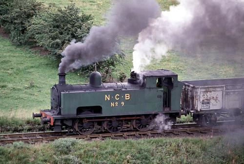No 9 at Bedlay (geoffspages) Tags: geotagged industrial steam ncb hudswellclarke bedlay geo:lat=5590621791920423 geo:lon=4057345390319824