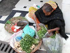 Old Veggie Lady (cowyeow) Tags: street travel portrait food woman india vegetables delhi indian baskets vendor streetfood bazar rajasthan newdelhi streetmarket olddelhi chawribazar chawri chawribazarroad
