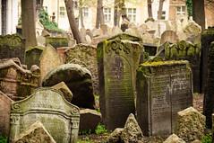 777 ~ the old Jewish  Cemetery (Teresa Teixeira) Tags: prague jewishcemetery josevof teresateixeira