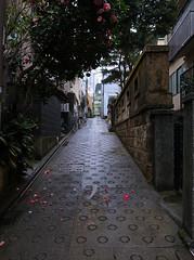 20120318_050 (A Miscellany of Photos) Tags: favorite shinjuku  2012 201203
