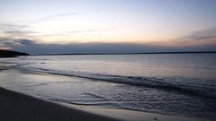 IMG_5818 (Martina Mastromonaco) Tags: beach vineyard martha s subset